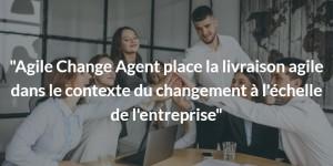Agile change agent interview